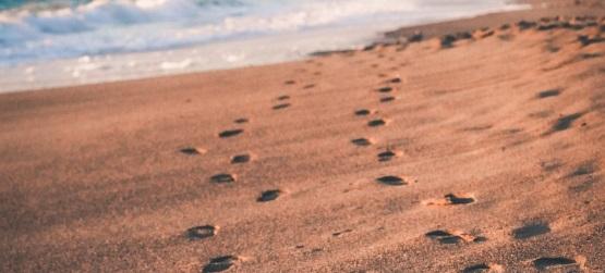 As condições para seguir a Jesus
