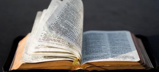 Vivemos da Palavra de Deus